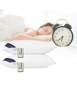 2PCS or 4PCS Feather-filled Luxury Pillow Cores