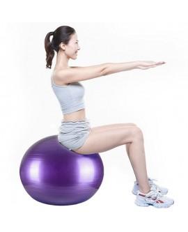 Fitness Yoga Balancing Stability Ball